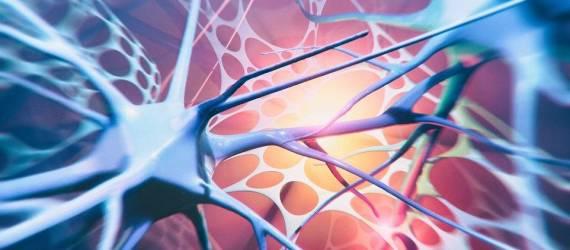Najczęściej spotykane choroby neurologiczne