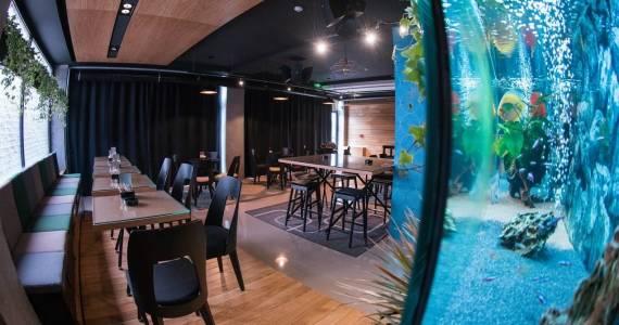 Gdzie szukać pomocy przy budowie homarium z prawdziwego zdarzenia w restauracji?