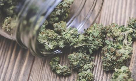 Jak przechowywać marihuanę by nie zatraciła swych właściwości?