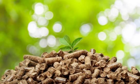 Dlaczego pellet to ekologiczny materiał opałowy?
