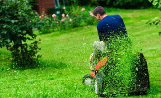 Traktorek do koszenia trawy, czyli przyjemne z pożytecznym