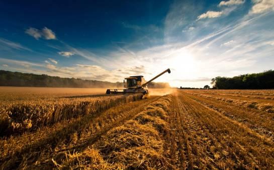 Na wsi najlepiej – zalety gospodarstwa agroturystycznego