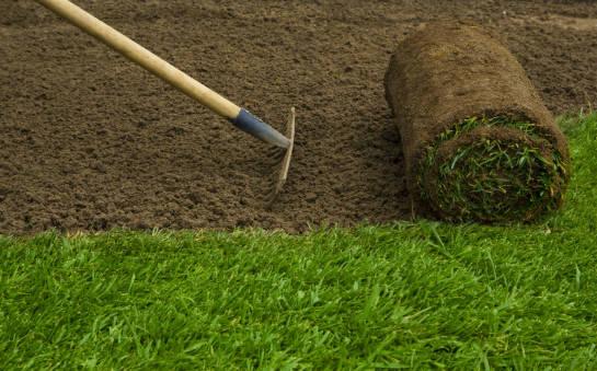 Jaka pora roku jest najbardziej odpowiednia na zakładanie trawy w rolce?