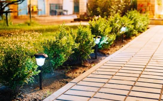 W jaki sposób ozdobić przydomowy ogród
