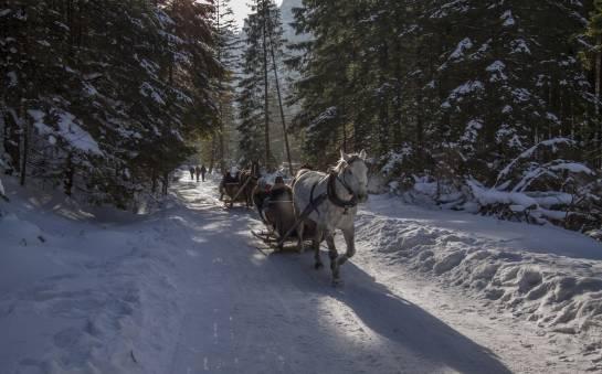 Gdzie najlepiej wybrać się na ferie zimowe?