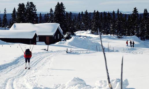 Domki do wynajęcia dla narciarzy. Przegląd propozycji