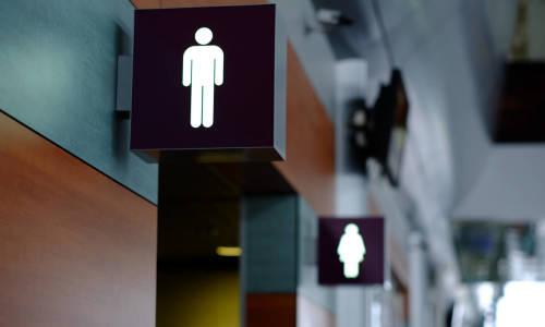 Na co zwrócić uwagę podczas projektowania toalet damskich i męskich?