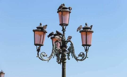 Metalowe elementy do produkcji lamp z wykorzystaniem motywów florystycznych