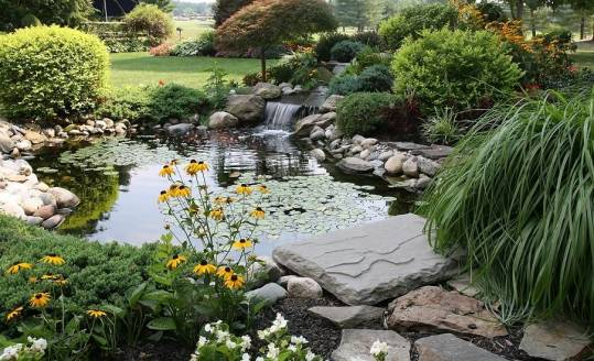 Jakie kamienie nadają się do wykończenia oczka wodnego?